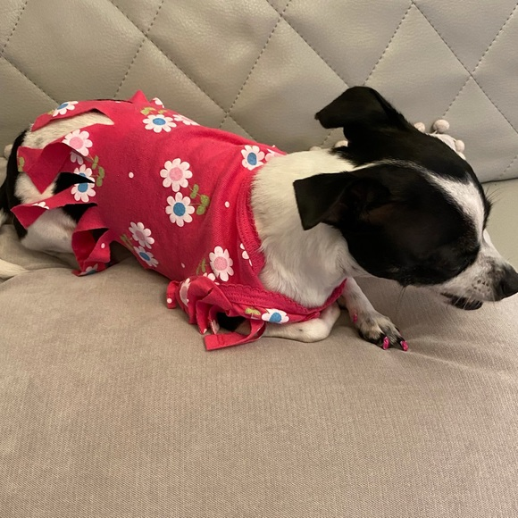 Pink flower small dog top XS